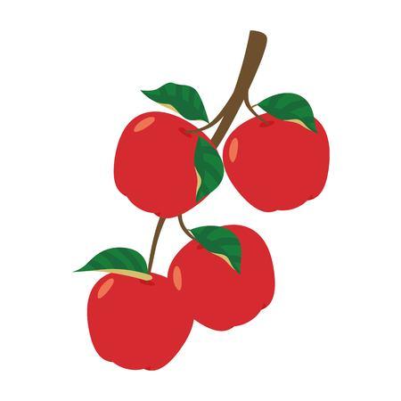 Apples on a tree branch vector illustration