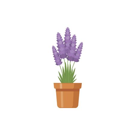 Flower in pot  vector illustration 写真素材 - 128648251