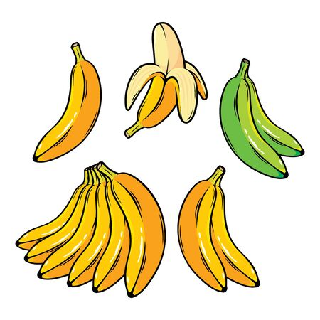 Banana vector illustration 写真素材 - 128648290