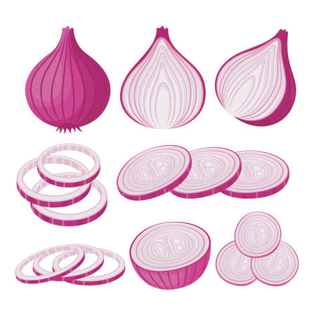 Onion vector set illustration with whole onion and onion slice