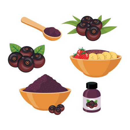 Illustration of acai berry and smoothie in bowl