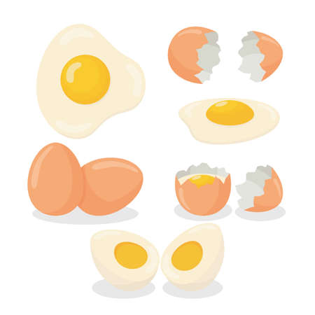 Illustration of raw egg, broken, boiled and fried egg 向量圖像