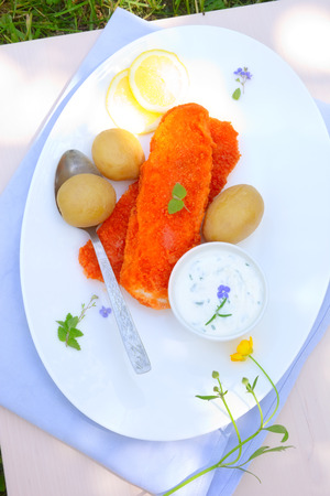 picknic: Fish and potato Stock Photo