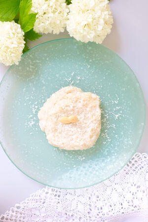 tapioca pudding  photo