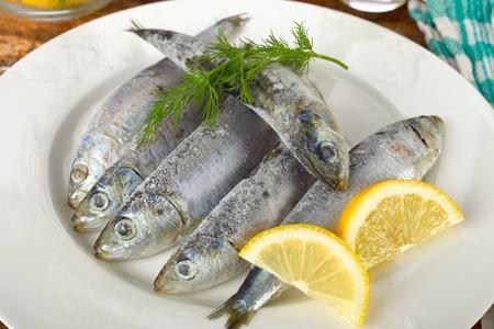 sardine: Sardine fish