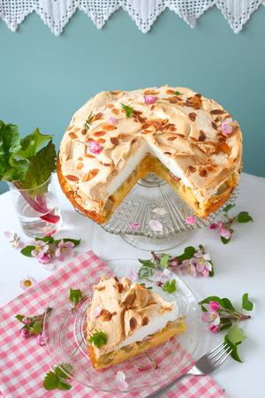 Torta de ruibarbo con merengue Foto de archivo - 78248412