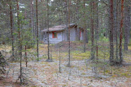Scandinavian house in a forest Banque d'images