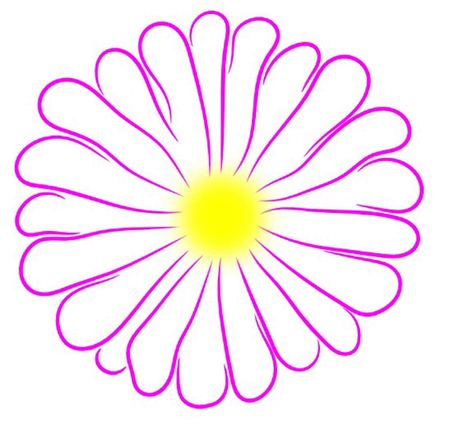 Purple Daisy with Yellow Center Outline Çizim