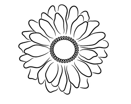 white daisy: Black and White Daisy Outline