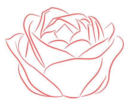 half open: Pink Rose Half Open Outline Illustration