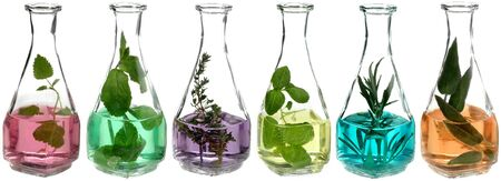 different herbs in glass bottles with coloured liquid photo