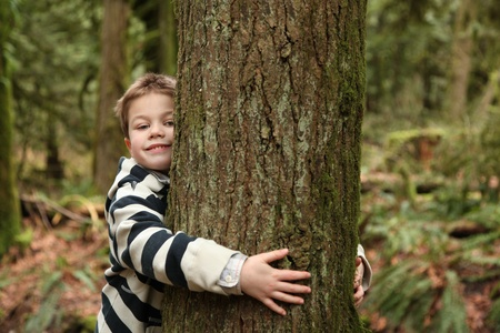 young boy hugging a tree Stock Photo