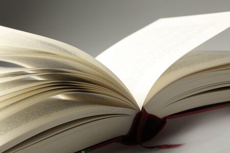 detail of an open book Stock Photo - 9514620