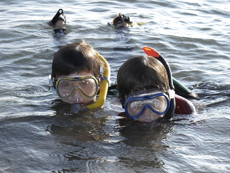 snorkling: two boys snorkling in the ocean Stock Photo