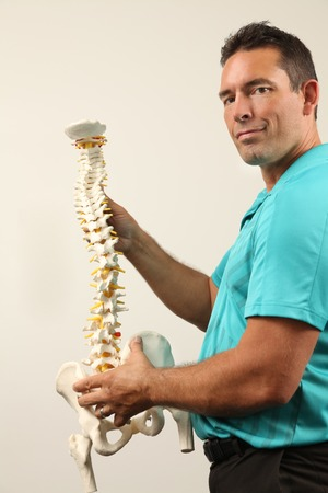 physical therapist: A Chiropractor showing a model of the human spine