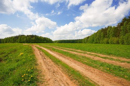 unpaved road: A rural landscape depicting fleids near the forest and an unpaved road