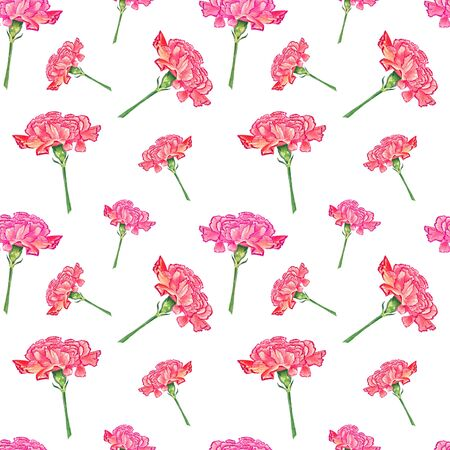 Carnation flowers on white background, watercolor hand-drawn illustration, seamless pattern Stock Photo