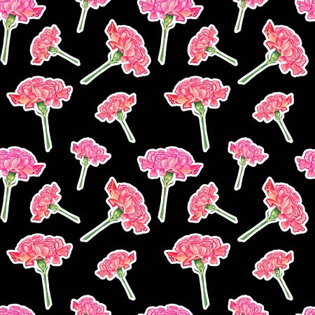 Carnation flowers with sticker effect on dark background, watercolor hand-drawn illustration, seamless pattern Stock Photo
