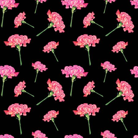 Carnation flowers on dark background, watercolor hand-drawn illustration, seamless pattern