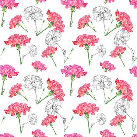 Carnation flowers on white background, mixture of watercolor and ink graphics hand-drawn illustration, seamless pattern