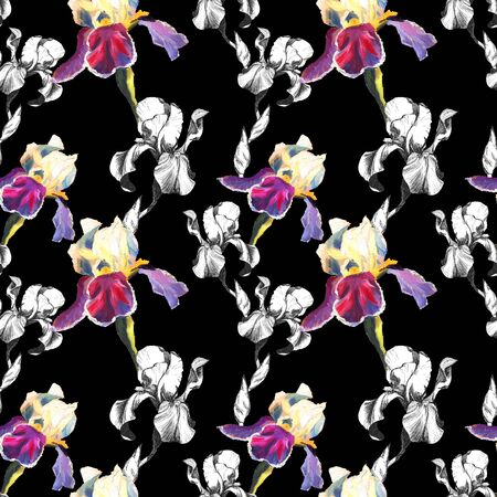 Floral seamless pattern with hand drawn ink and oil iris flowers on black background. Flowers lined up in harmonious uninhibited sequence