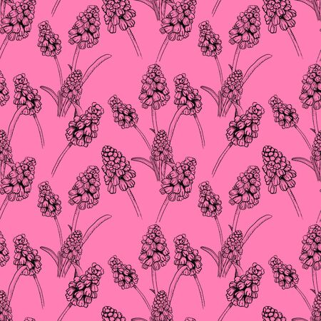 Seamless pattern with realistically painted ink Muscari flowers. Hand drawn illustration on pink background modified to digital source for modern disign, print textile, fabric, wrapping paper