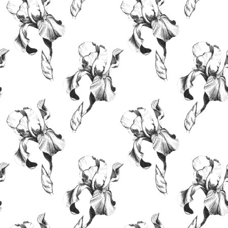 Floral seamless pattern with hand drawn ink iris flowers on white background. Flowers lined up in harmonious geometric sequence Фото со стока