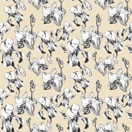 Floral seamless pattern with hand drawn ink iris and orchid flowers on beige background. Flowers lined up in harmonious uninhibited sequence Фото со стока
