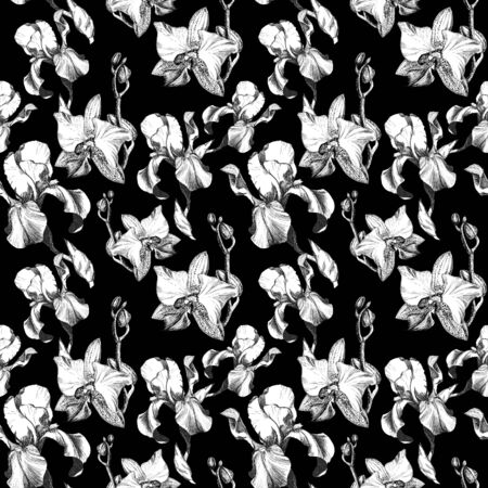 Floral seamless pattern with hand drawn ink iris and orchid flowers on black background. Flowers lined up in harmonious uninhibited sequence