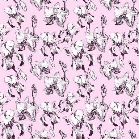Floral seamless pattern with hand drawn ink iris and orchid flowers on pink background. Flowers lined up in harmonious uninhibited sequence
