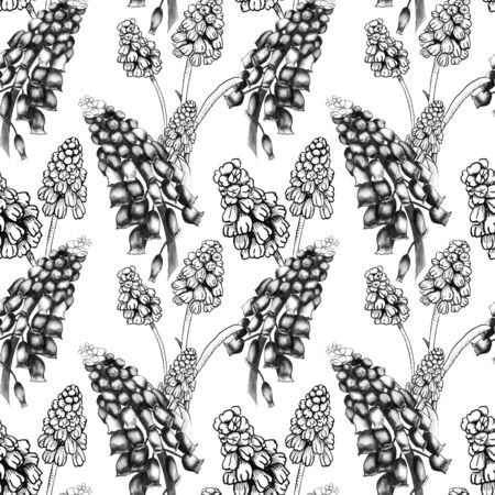 Seamless pattern with realistically painted watercolor and ink Muscari flowers. Hand drawn illustration in grayscale muted shades for modern disign, print textile, fabric, wrapping paper