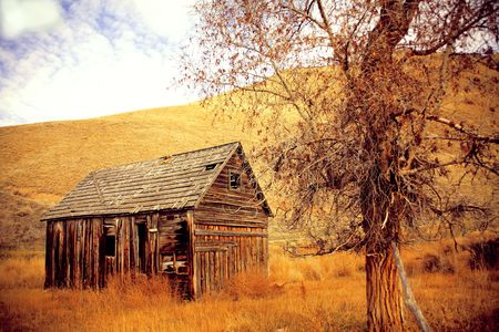 Hillside view of a 100 year old cabin surrounded by winter weeds and golden grass
