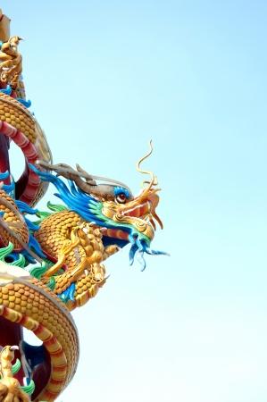 Dragon on the blue sky photo