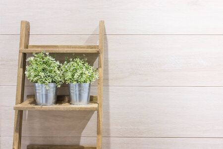 wood laminate: Flowerpot on the stair with wood laminate background. Stock Photo
