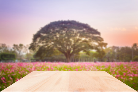 Wood table top on blured flower garden background : Can use for montage or display your product.
