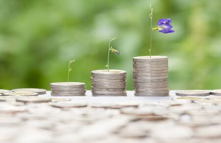 banco dinero: El concepto de crecimiento dinero o puede utilizar para el montaje de su negocio de éxito.