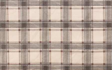 scott: Scott on fabric pattern and background.