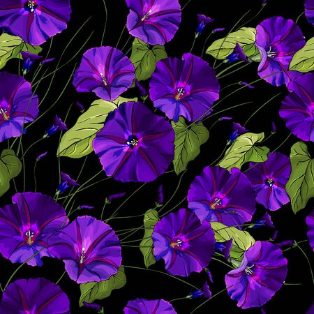 Vector floral seamless pattern with purple bindweed and green leaves on black background. Beautiful Pattern for fashion, textile, wallpapers, greetings, web pages.