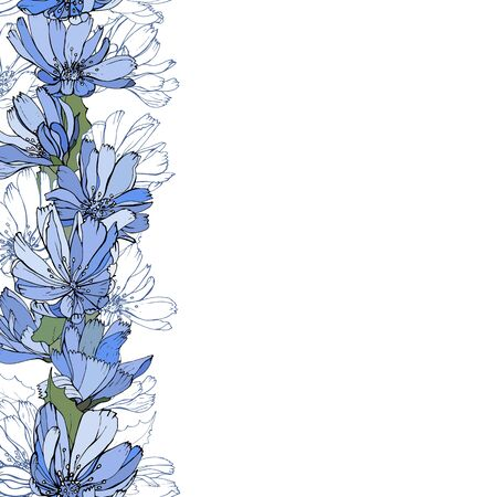 Floral vertical border with blue flowers chicory on white background. Hand drawn. For your design, greeting cards, wedding invitation. Copy space. Vector stock illustration. Ilustracja