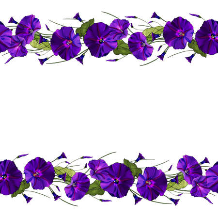 Floral frame with purple flowers. Seamless pattern brush with bindweed and green leaves. Horizontal border for festive design, postcards, posters, wedding invitations.