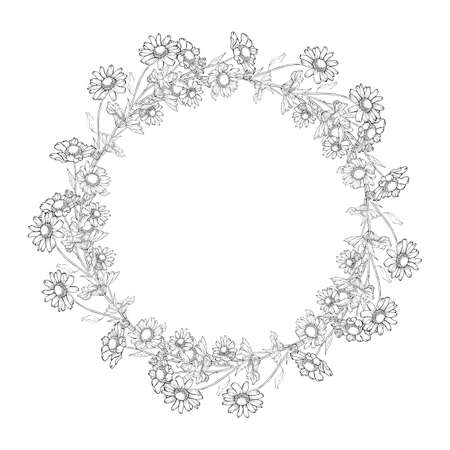 Floral round frame with chamomiles. Wreath of oulline flowers hand drawning. Copy space. Black and white. Vector stock illustration.