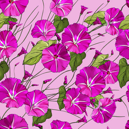 Vector seamless pattern with bindweed and green leaves on pink background. Floral pattern for textile, wallpapers, print, greetings, web pages.