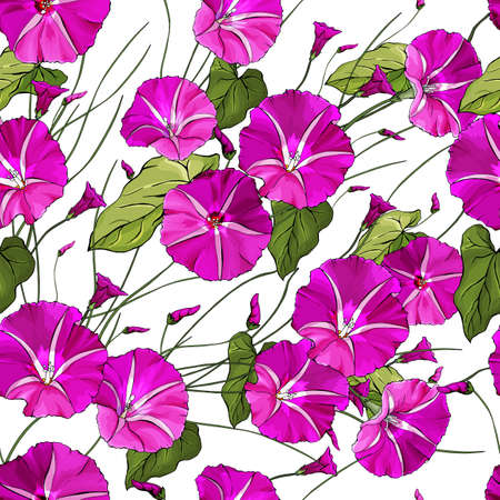 Floral seamless pattern with pink bindweed and green leaves on white background. Beautiful Pattern for textile, wallpapers, print, greetings, background for web pages.