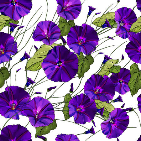floral seamless pattern with purple bindweed and green leaves on white background. Beautiful Pattern for fashion, textile, wallpapers, greetings, web pages. Иллюстрация
