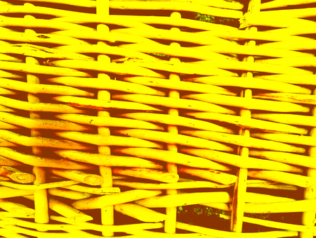 Textured yellow background. Abstract composition. Close-up.