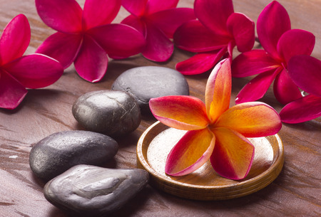 frangipani flower: Red frangipani flower in spa concept