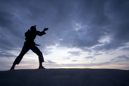 arts: Silhouette of young boy performing a pencak silat, Malay traditional discipline martial art