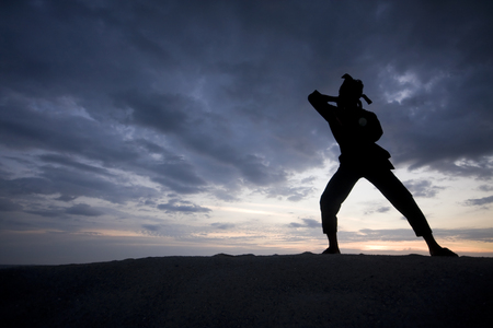 discipline: Silhouette of young boy performing a pencak silat, Malay traditional discipline martial art