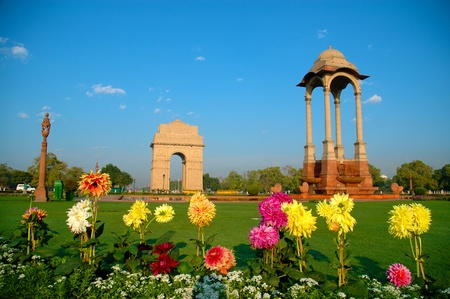 india gate: Flowers in front of India Gate Stock Photo