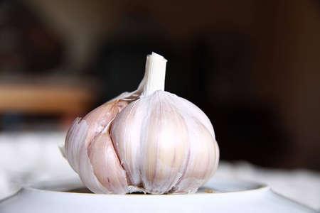 ingradient: Garlic clseup